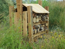Insect Hotel in Garden at SECWCD. Built by Eagle Scout Nathan Logan