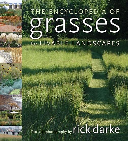 Ornamental Grasses Southeastern Colorado Water
