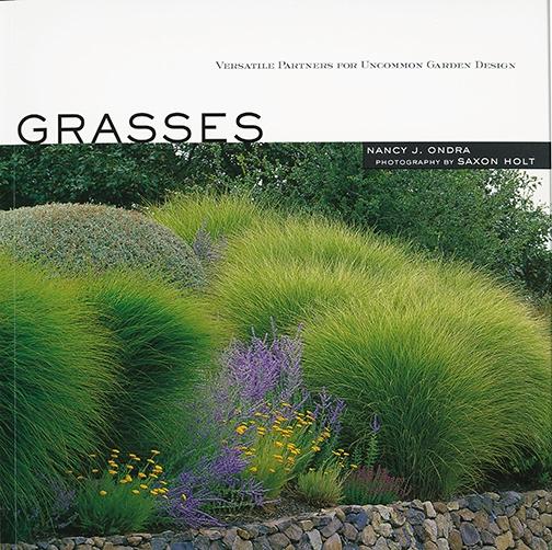Ornamental grasses southeastern colorado water for Colorful perennial grasses